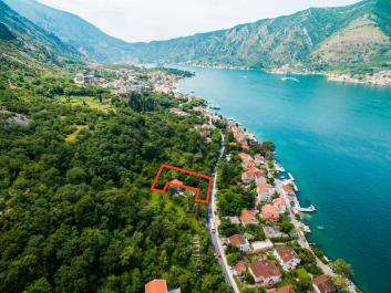 Land in Dobrota with great view to Boka Bay, 30 m from the sea